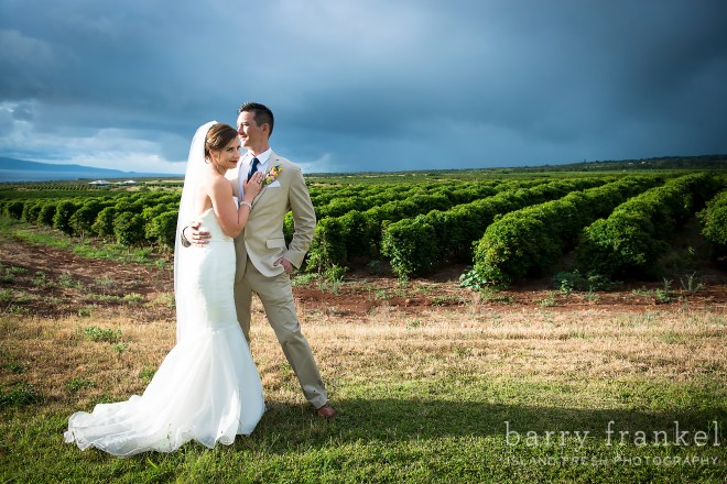 Maui wedding at Coffee Farms