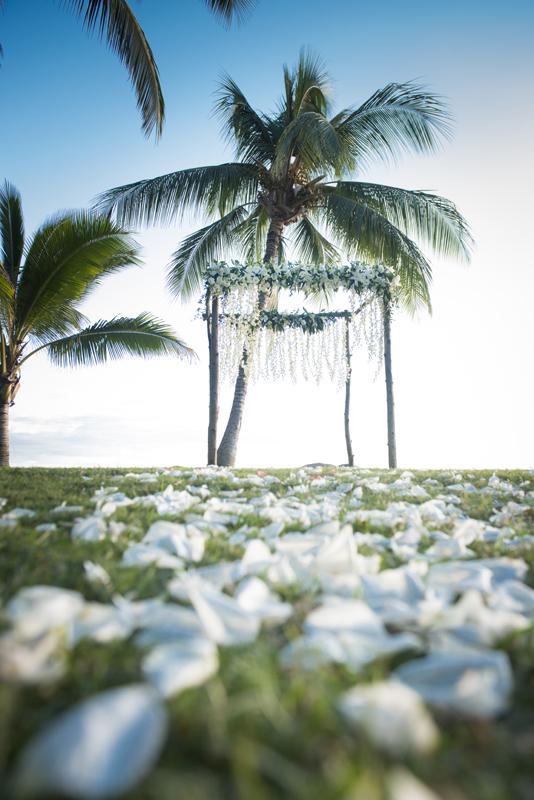 Aisle of white rise petals for maui wedding