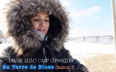 """""""En Terre de Blues"""", l'intégrale"""