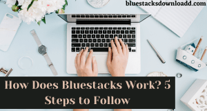 How Does Bluestacks Work? 5 Steps to Follow