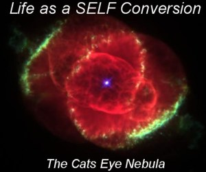 Life as a SELF Conversion