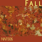 nnts06-fallcover
