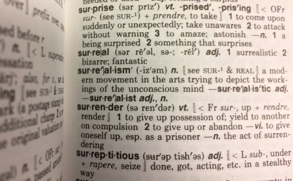 """""""Kennedy Mitchum, a recent graduate of Drake University in Iowa, contacted Merriam-Webster, which has published its dictionaries since 1847, to propose updating the term - Karen BLEIER / ©AFP"""""""