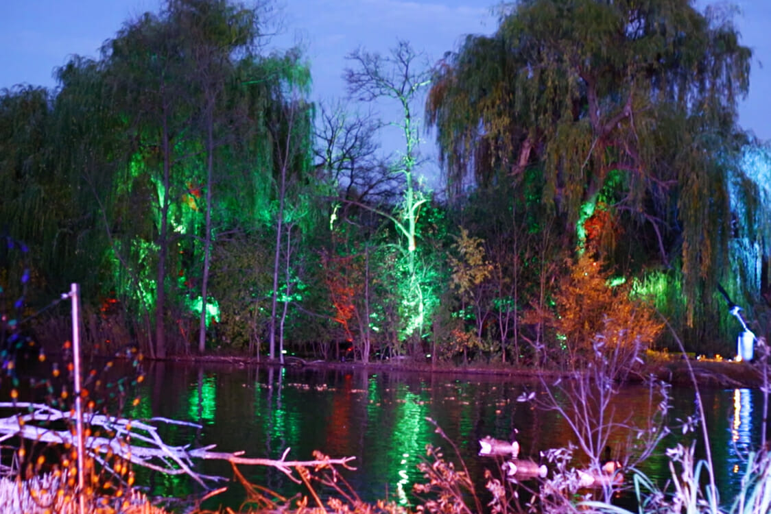 Zoo Lights Detroit