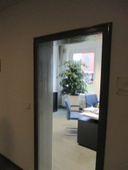 Office-Plants #5