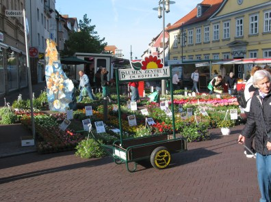 blumen-zentrum-hoppe-uelzen-vitalmarkt-03