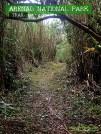 La Fortuna, Costa Rica - Arenal Volcano Trail 2