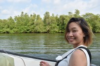 Sailing through the mangrove river