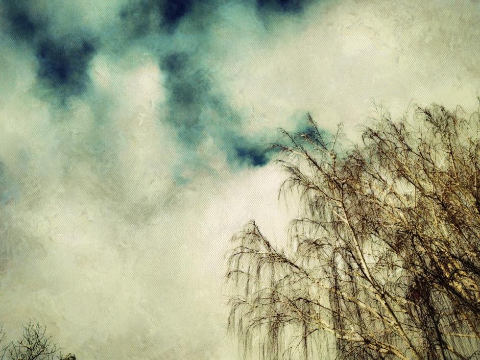 Painterly Tree
