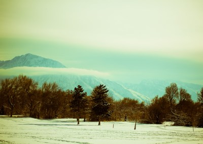Hazy Shade of Winter   Blurbomat.com