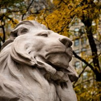New York City Public Library Lion - Fortitude? Patience? | Blurbomat.com