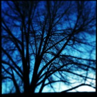 Darkness | Blurbomat.com