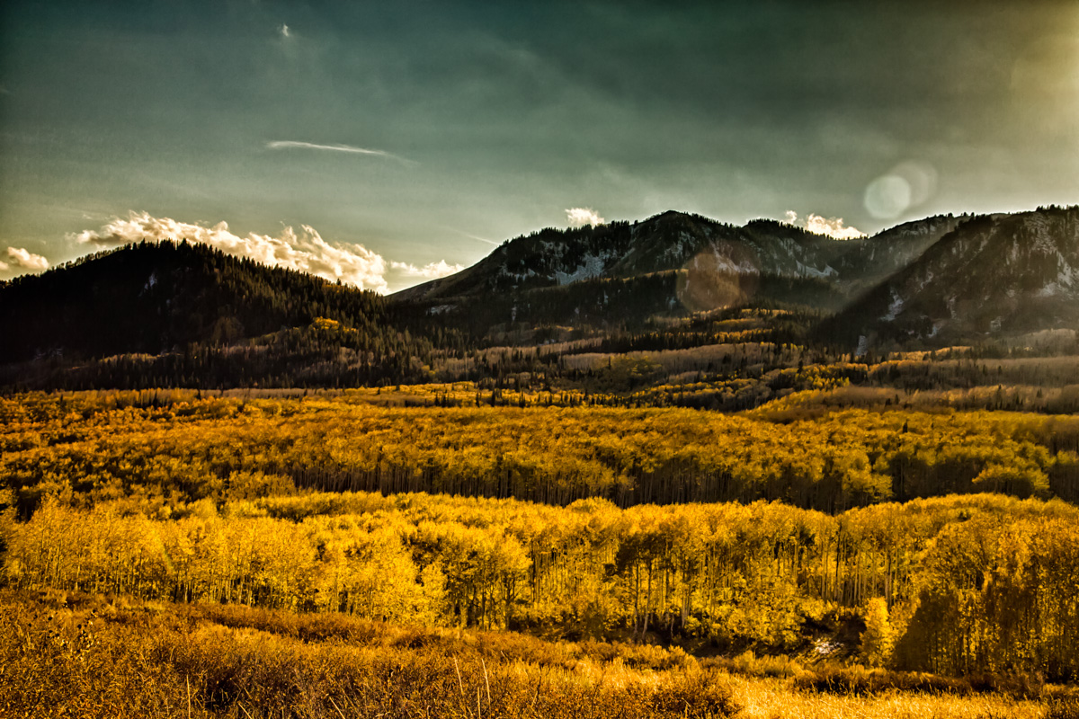 Autumn Scene: Guardsman Pass, Utah