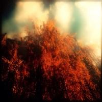 Cascades of Bokeh | Blurbomat.com