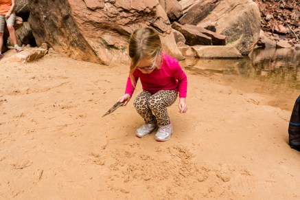 Marlo plays in the sand at Upper Emerald Pool, Zion Naitonal Park, October, 2014.