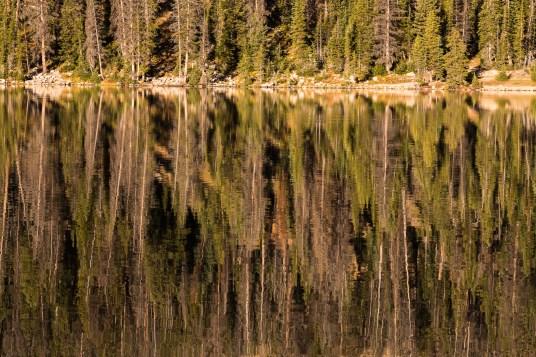 Mirror Lake Reflection II