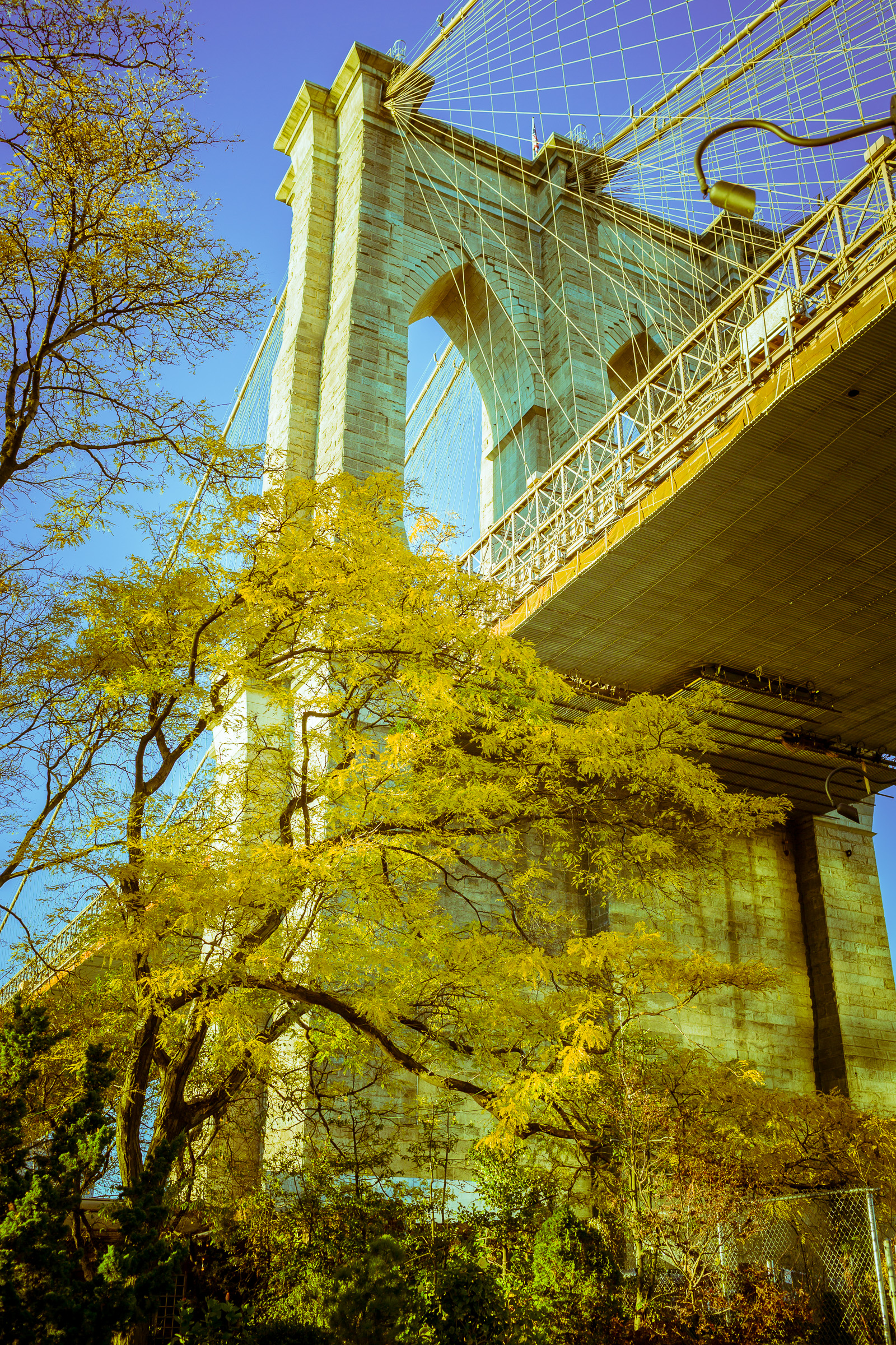 Golden Brooklyn Bridge