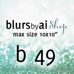 B49_10x10