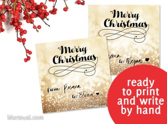 black friday freebie when subscribing to my newsletter