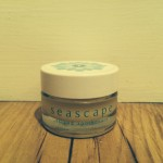 Seascape Peppermint Oil Lip Balm