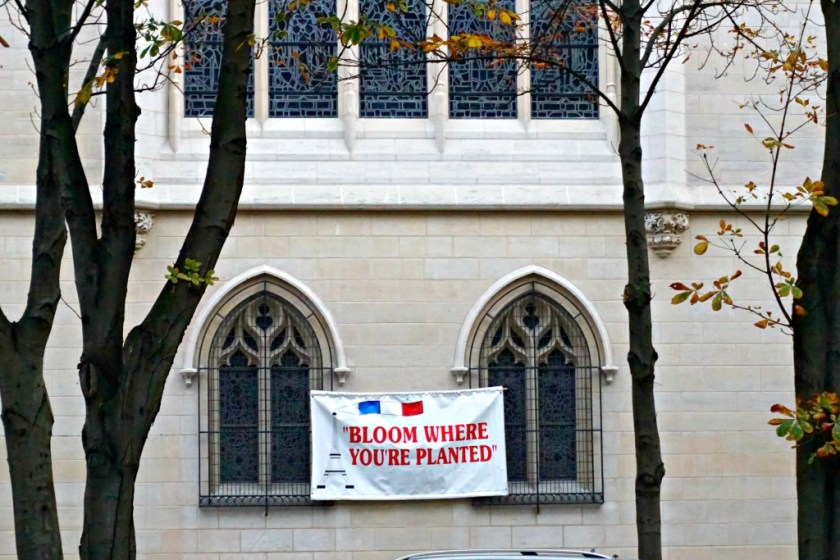 bloom-where-youre-planted-paris