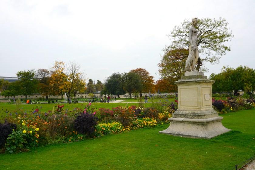 Beautiful flowers at the Tuileries Garden in Paris