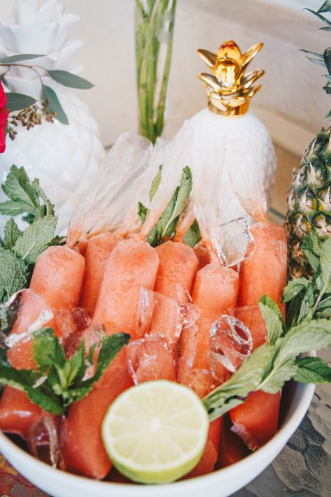 tropical-bridal-shower-watermelon-tequila-margarita-popsicles-close-up