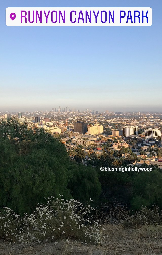 View of Hollywood and Downtown Los Angeles from the top of Runyon Canyon Hike in Hollywood
