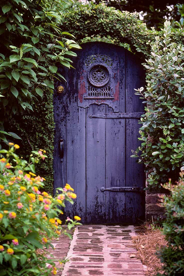 Image result for the purple door