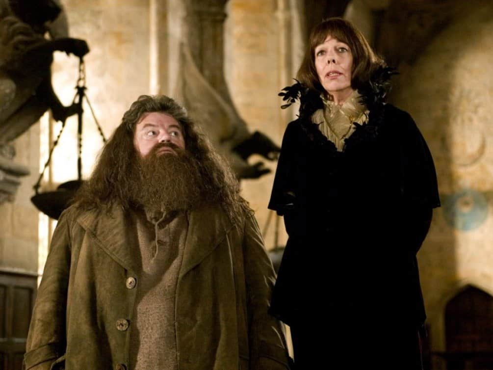 """Famous Stars Who Shifted Themselves From """"Harry Potter"""" TO """"Game Of Thrones"""" 14"""