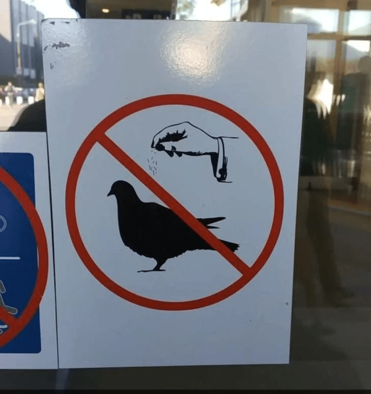15 Best Designs That Have Failed But Feels Humans Are Intelligent 14