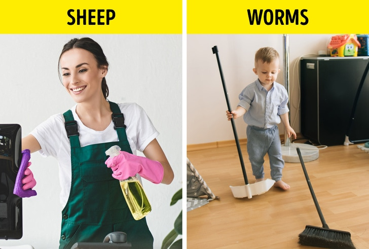 6 Best Cleaning Systems To Save Your Precious Time 7