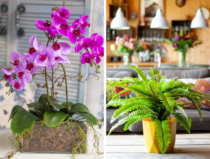10 Things you should not keep in your home