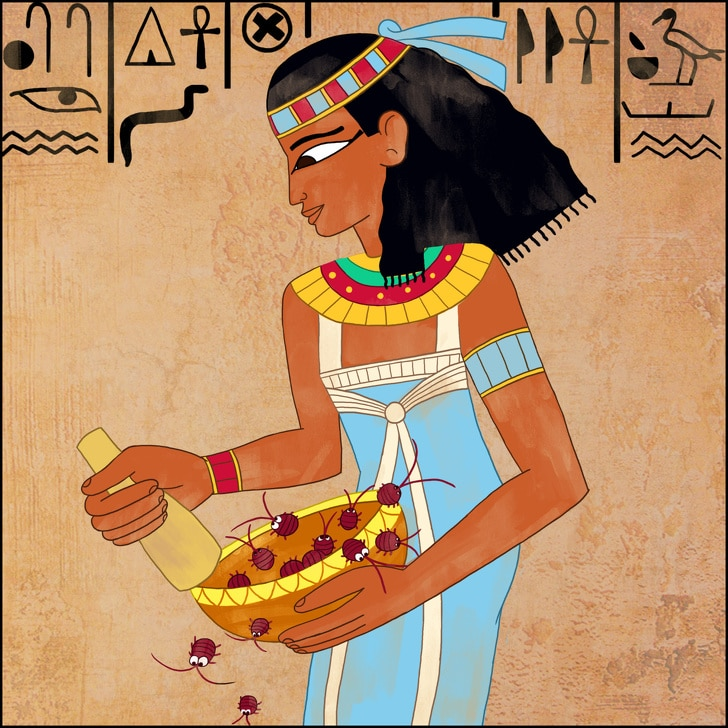 6 Weird Facts About Ancient Egypt That Would Even Stupefy The History Buffs 2