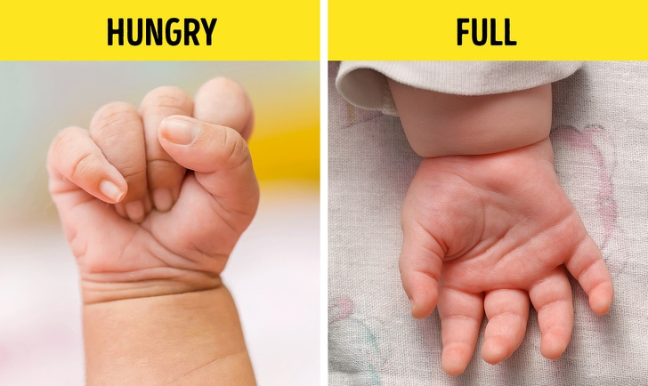 18 Basic Signs Which Help You Better Understand Your Baby 3