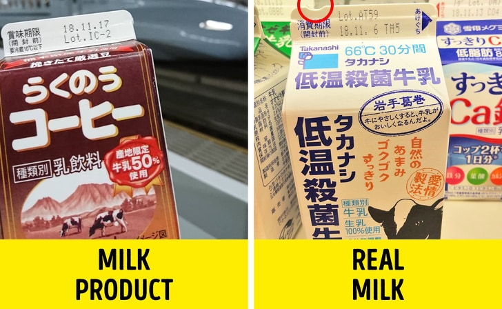 6 Best Things From Japan That Could Turn Our Lives 4