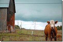BYOD - Don't let it out of the barn without some control