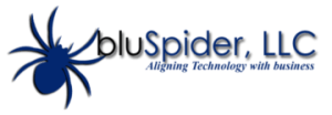 Why the name bluSpider