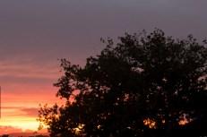 sunrise 18/3/2014