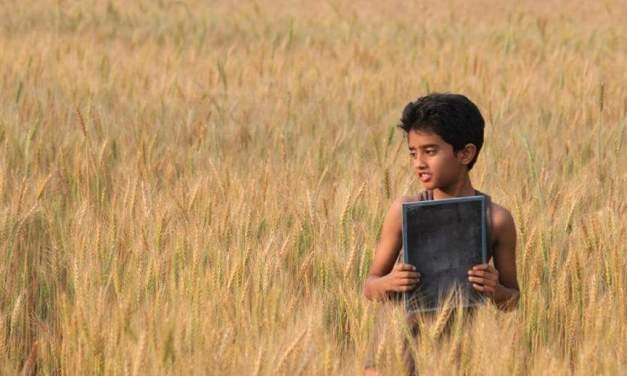 প্রচারবিহীন সফল আওয়াজ 'মাটির প্রজার দেশে'