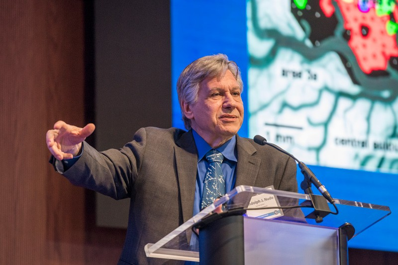 Harnessing UD's Growing Neuroscience Network