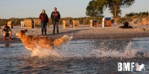 Wasserspiele in der Ostsee