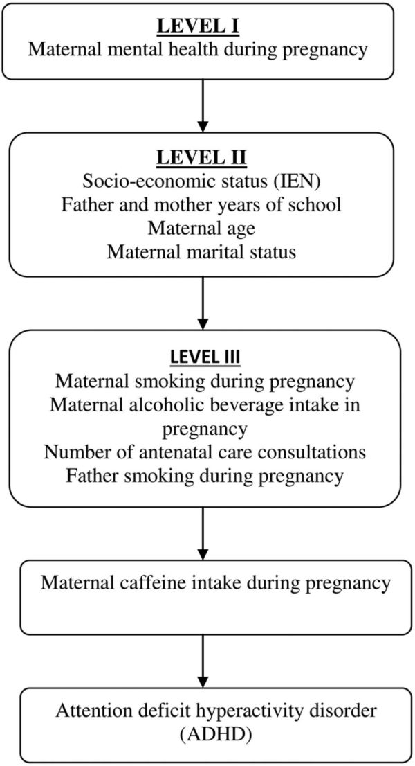 Caffeine consumption during pregnancy and ADHD at the age ...