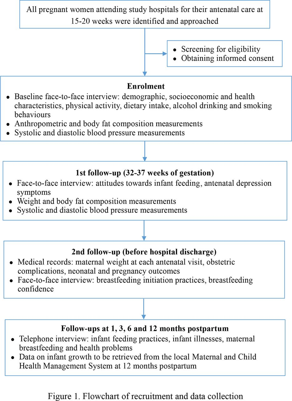 Maternal Lifestyle And Nutritional Status In Relation To Pregnancy And Infant Health Outcomes In