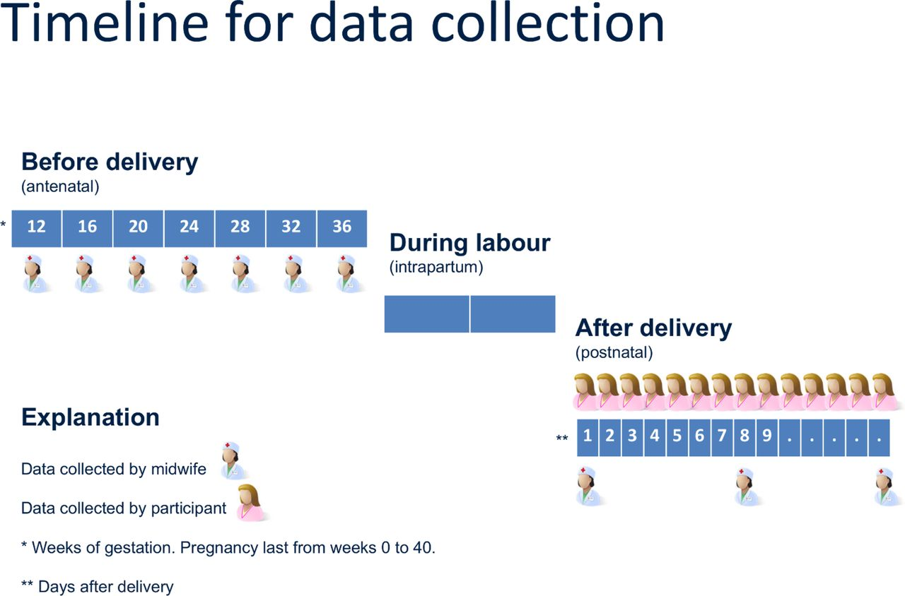 Pregnancy Physiology Pattern Prediction Study 4p Study Protocol Of An Observational Cohort