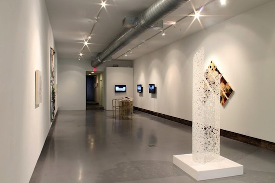 Hamiltonian_Gallery_Vantage_Points_2013_Installation_C