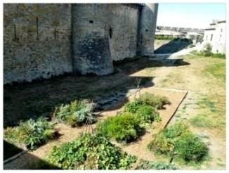 Garden in moat outside walls of Nuremberg
