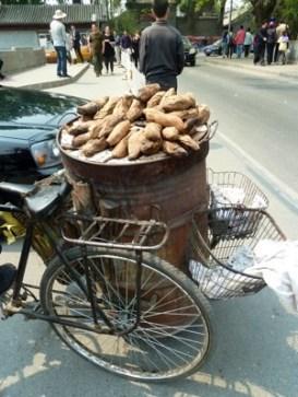 Sweet potatoes roasting on back of bicycle in Beijing