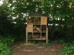 Nests for bees and wasps