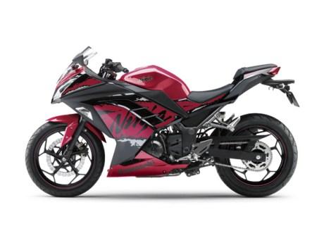 Kawasaki-Ninja-250-FI-Striping-2017-Candy-Persimmon-Red-Metallic-Spark-Black-Special-Edition-17_EX250M_RD3_LS-BMspeed7.com_